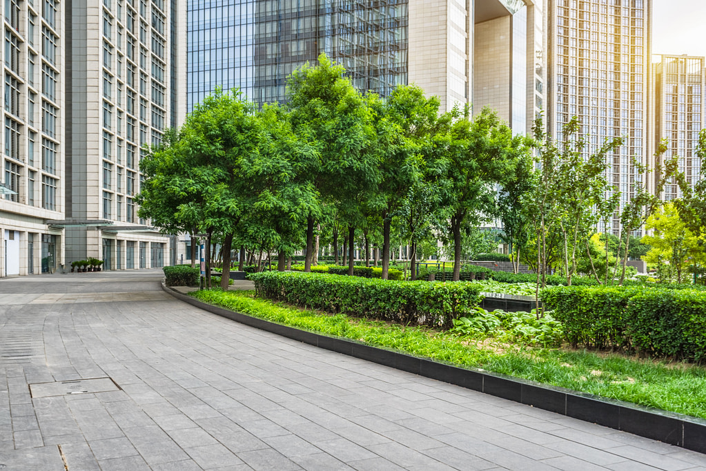 Checklist for Designing Commercial Landscapes
